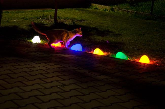 Разноцветные светящиеся камешки