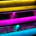 RGB светодиоды на улице