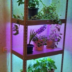 Делаем подсветку для комнатных цветов